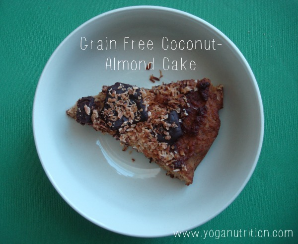 Grain free coconut-almond bars